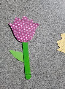 Frühlingsblumen zum Verschenken