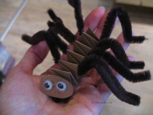 Spinne aus Hexentreppe